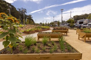 Close up look at residence's raised garden beds at Colma's Veterans Village.