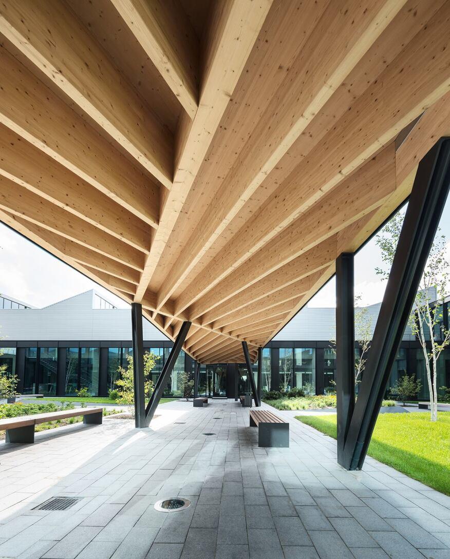 Wood Walkways: Architect Magazine