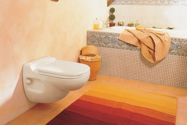 Wall Hung Toilets Offer Bathroom Benefits For A Pretty