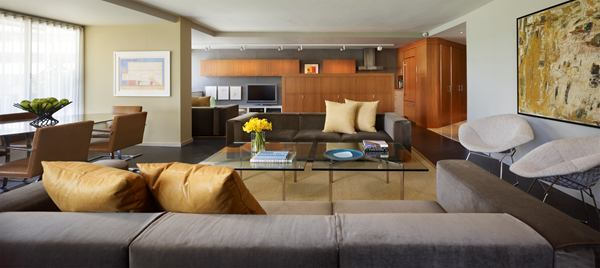 Watergate Apartment Remodel Casts Light On A Small Space Remodeling