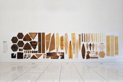 Architect Magazine Architectural Design Architect Online The