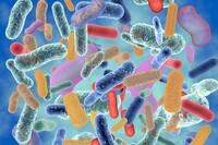 抗微生物技术