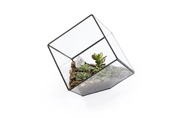 Gift guide what to give a landscape architect architect for Gifts for landscape architects