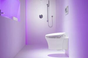 Wall-Hung Toilets Offer Bathroom Benefits for a Pretty Penny ...