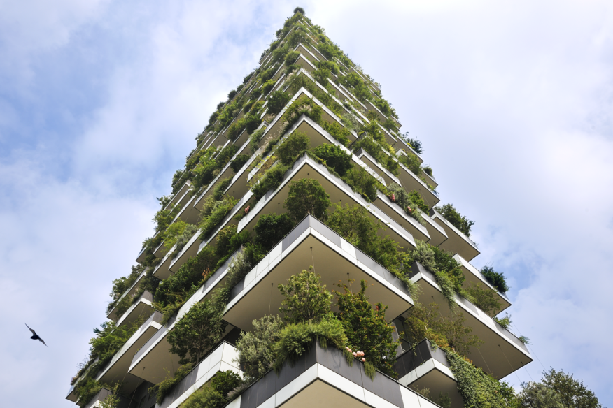 living walls to code or not to code architect magazine green