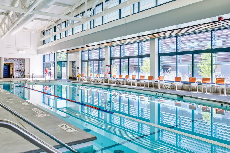 Managing Innovation In The Pool And Spa Industry Aquatics